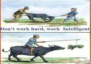 hard work-6