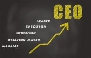 CEO selection